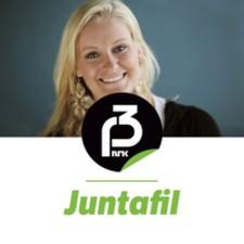 Juntafil