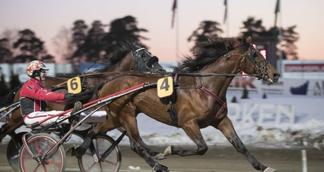 V64-bankeren matches mot Elitloppet
